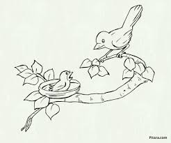 hawaiian parrot birds parrots coloring pages free printable s
