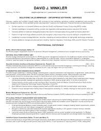 Prepossessing Resume For Sales Manager In Insurance Company In