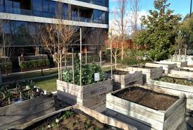 act government offers fresh community garden grants