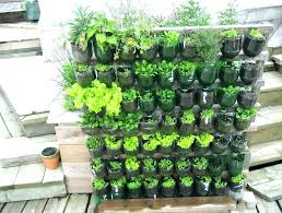 potted vegetable garden for beginners patio container