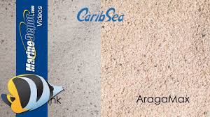Aquarium Sand: Deep Sand Bed or Shallow? Coarse or Fine? Find ...