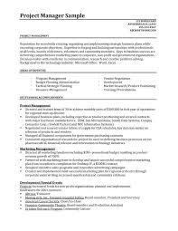 Example Of Project Manager Resume Sample Professional Letter Formats