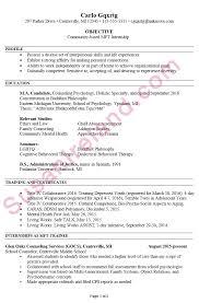 Gallery Of Resume Example For Mft Internship Susan Ireland Resumes