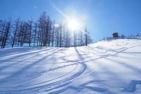 「スキー 画像」の画像検索結果