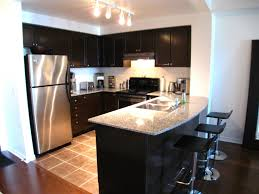 Small Condo Kitchen Condo Kitchen Design Ideas Home Decoration Pinterest Small