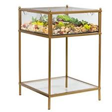 terrarium furniture. Image Is Loading Terrarium-Display-End-Table-with-Reinforced-Glass-in- Terrarium Furniture R