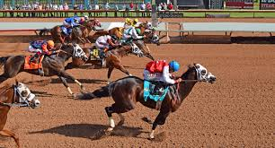 Ruidoso Downs Seating Chart Faq Ruidoso Jockey Club