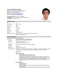 Biodata Format For International Jobs Resume Template Example