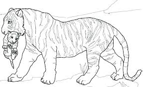 Tiger Coloring Pages To Print Colouring Pages Of Tiger Printable