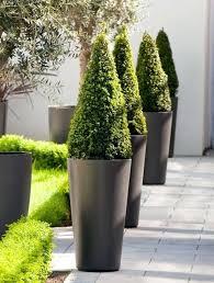 modern planter outdoor planters arrangements