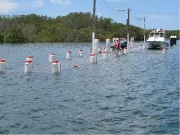 Tide Chart Port Stephens Acs King Tides