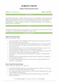 Sales And Marketing Resume Objective Objectives For Marketing Resume Paknts Com