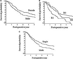 Stage 4 Lung Cancer Survival Rate Survival Curves For Subpopulations Of C Stage N2 Pn2 Non Small Cell