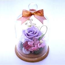 preserved flowers in glass lavender preserved flower never withered rose in a glass dome special day gift preserved flowers in glass dome