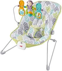 Amazon.com : Fisher-Price Baby's Bouncer, Green/Blue/Grey : Baby