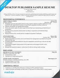 Resume Layout Magnificent Good Resume Layout Example Resume