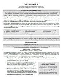 Resumes With Photos Executive Resume Samples Professional Resume Samples