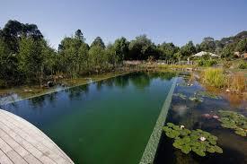 natural pool for B&B in Australia