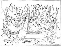Beautiful Nature Coloring Pages Detailed Landscape For Adults To