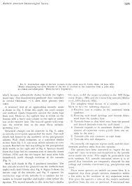 film or book essay hindi