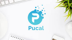 Pucal Premium Design Google Slide Template Keynote