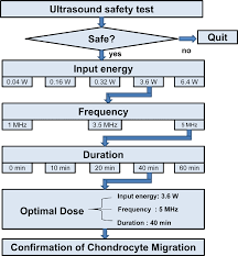 Ultrasound Dosage Chart Figure 3 15 From The Effect Of Low Intensity Pulsed