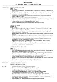 Studio Manager Resume Samples Velvet Jobs