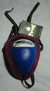 Twins Muay Thai Boxing( Groin Protector <b>Blue Color</b> Size Large ...