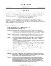 Sample Resume For Hr Professional Cv For Hr Profile Remarkable Sample Resume Hr Profile 48