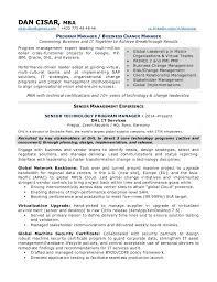 Release Management Resume Doc Professional Resume Cv Maker