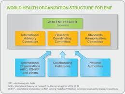 Emf Introduction To The World Health Organization