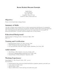 Resume Employment Objective Lezincdc Com