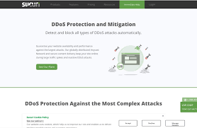 DDoS Attacks Explained: Causes, Effects, and How to Protect Your Site
