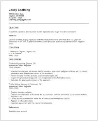 Some Resume Samples Some Resume Samples Example For Resume Free ...