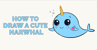 how to draw a cute narwhal featured image