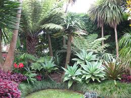 Small Picture Sub tropical garden Landscape design garden care services and