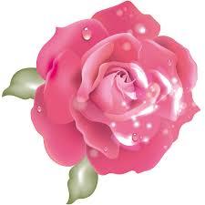Risultati immagini per rosa