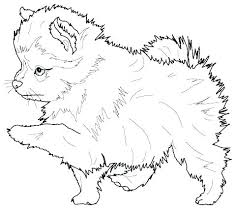 Store Coloring Page Puppy Coloring Pages Printable Page Pet Store