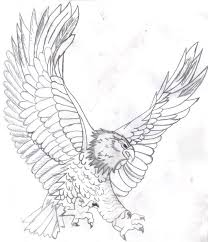 Small Picture Free Printable Bald Eagle Coloring Pages For Kids