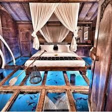 115 best Beds ...exotic,fun,unique images on Pinterest | At home, Cool  ideas and Creative