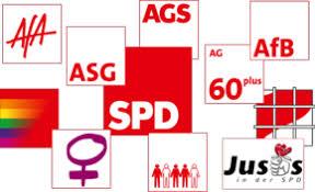 Bildergebnis für Die Organisation der SPD