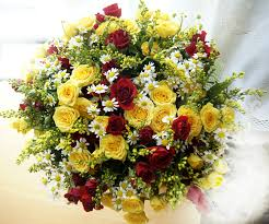 free images petal daisy gift autumn decoration bright joy october floristry yellow flowers chamomile rel multi color