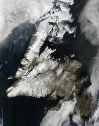 Ньюфаундленд — Википедия