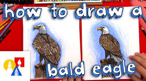 Small Picture How To Draw A Realistic Bald Eagle YouTube