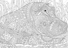 Small Picture Adult Coloring Pages Hippo Hippopotamus Zentangle Doodle
