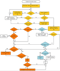 Clinical Reasoning Flowchart Of The Interdisciplinary Group