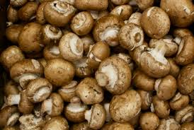 Image result for brown mushrooms images