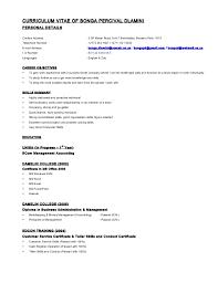 Address Format On Resume Curriculum Vitae of Bonga Dlamini Resume Format 64