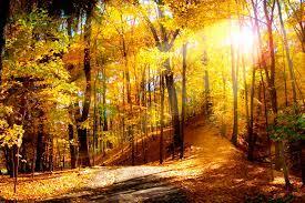 Free Desktop Wallpaper Autumn Scenes ...