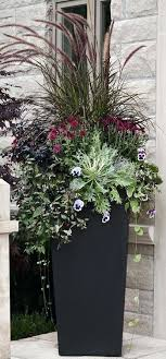 large outdoor potted plants large outdoor potted plants uk
